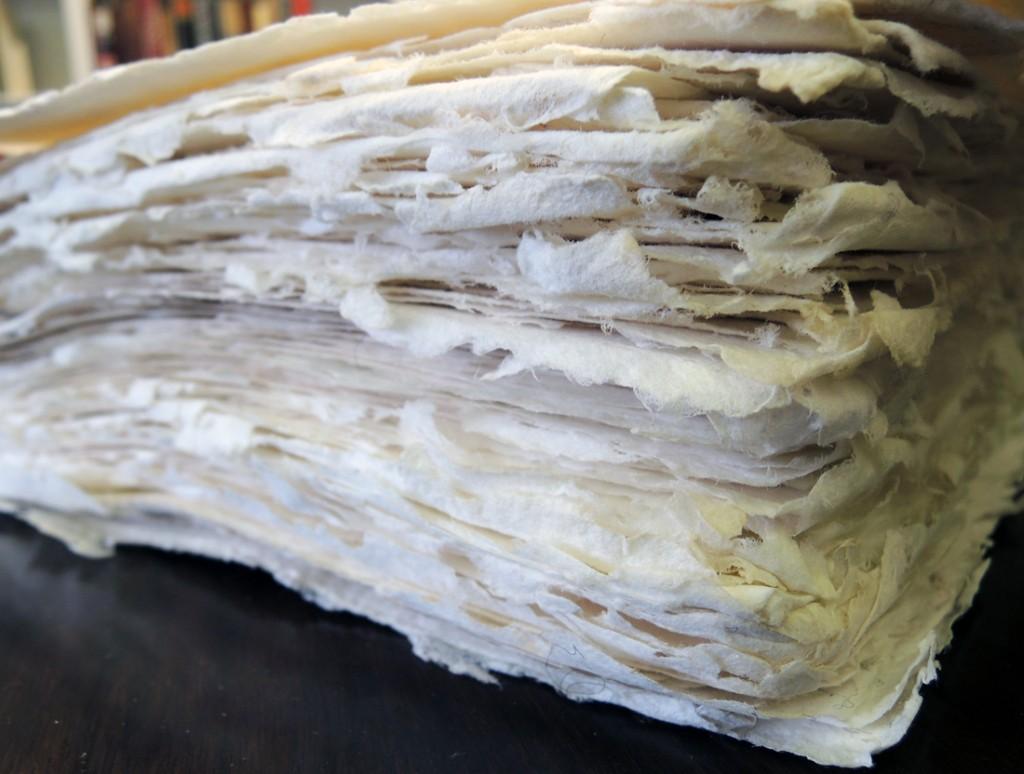 paper allen