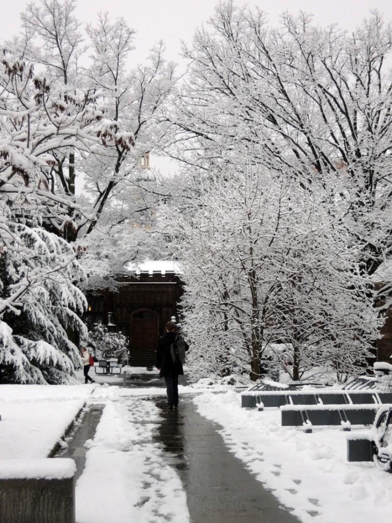 snow2013d