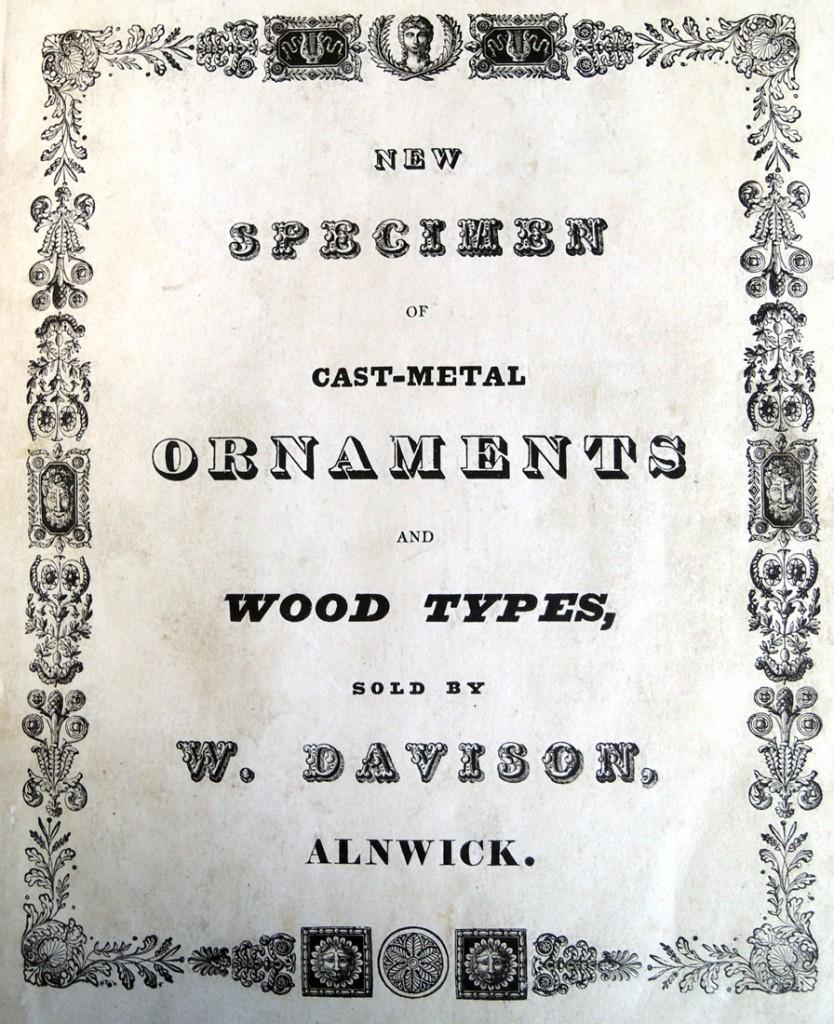 davison new specimen2