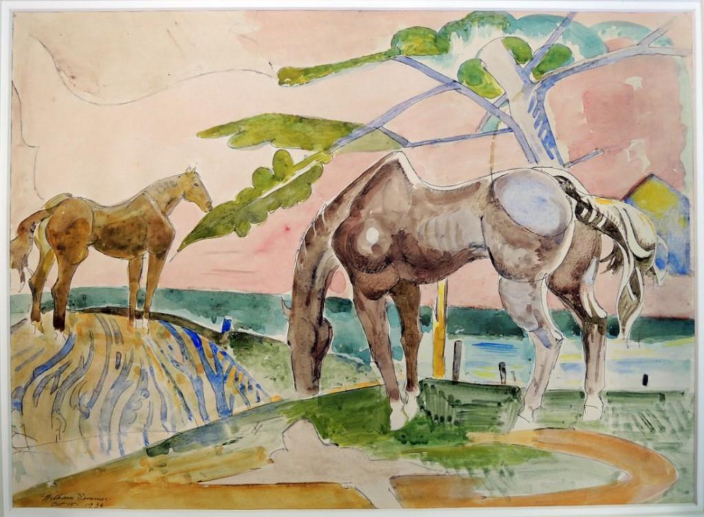 sommer two horses grazing