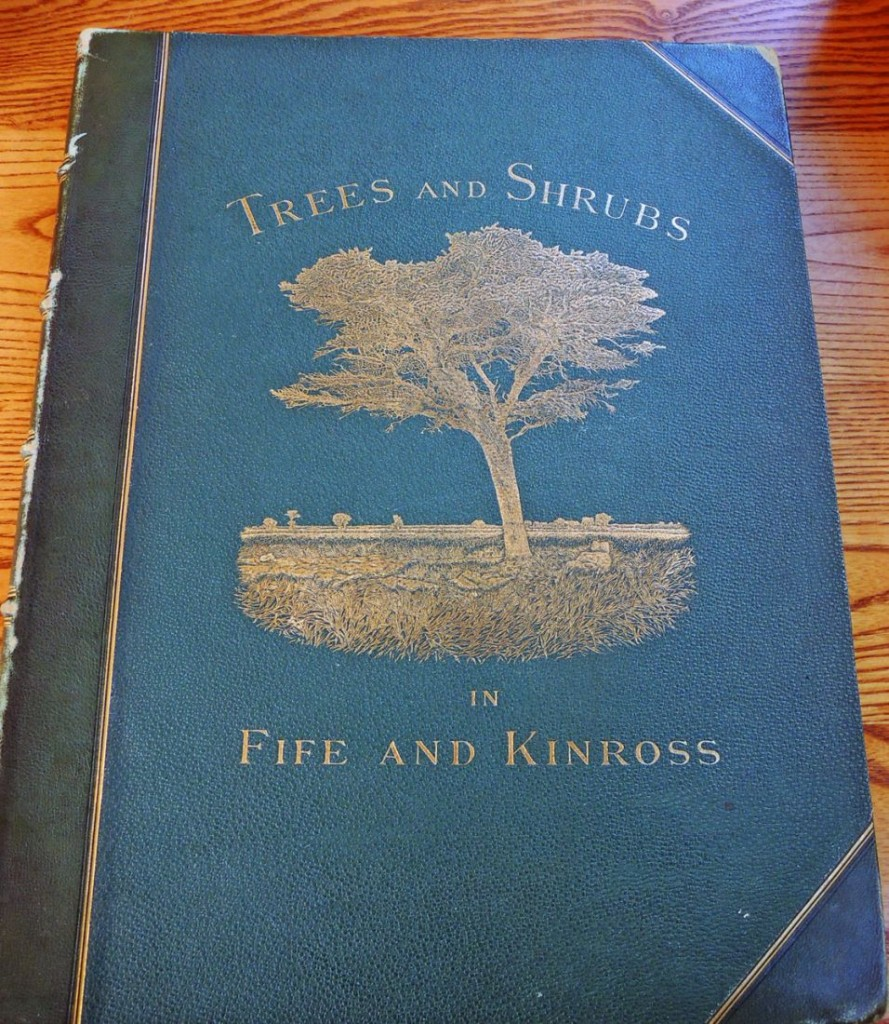 trees of fife