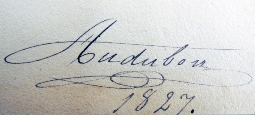 audubon signature