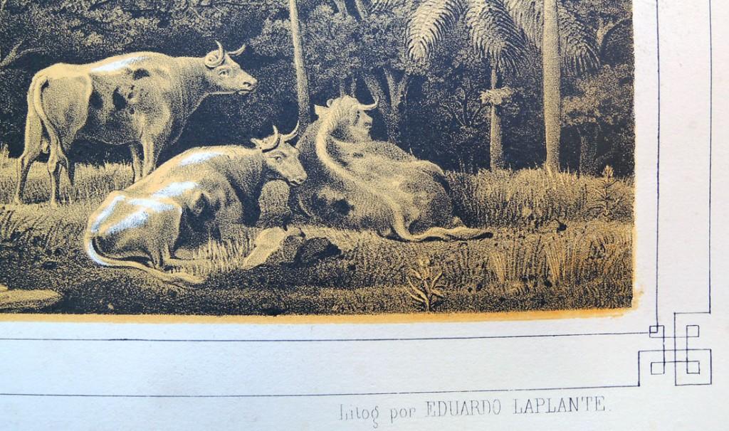 laplante3